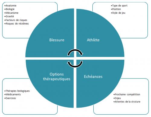 La rééducation des blessures musculaires en général va s'axer sur plusieurs aspects