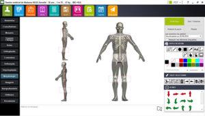 interface dossier médical podologue, module morphologie